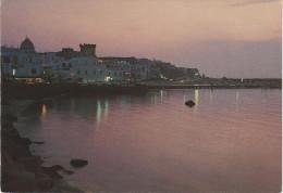 AK Forio D´ Ischia Notturno Nocturne Bei Nacht Campania Kampanien Italien Italia - Napoli (Naples)
