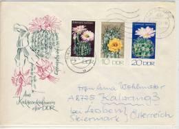Schmuck FDC, DDR Kakteenkulturen,  Cactus,  Neat Envelope ; Enveloppe Bijoux - Cactusses