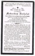 SINT-GILLIS (Dendermonde) - ELSENE , Doodsprentje Van Medardus VERHELST + 1923 - Religion & Esotericism