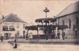 Souvenir De Macon 5: Arbre Célèbre Du XVe Siècle 1903 - Momignies