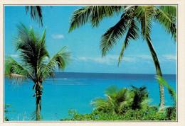 NUOVA CALEDONIA  ANEMATA:  SERENITA' SOTTO LE PALME DI COCCO     (NUOVA CON DESCRIZIONE DEL SITO SUL RETRO) - Nuova Caledonia