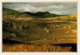 NUOVA CALEDONIA    TONTOUTA:  PAESAGGIO     (NUOVA CON DESCRIZIONE DEL SITO SUL RETRO) - Nuova Caledonia