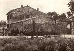 06 Vence. Domaine Camping. La Bergerie - Vence