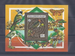 MADAGASCAR. Faune et scoutisme. Oiseaux et papillons