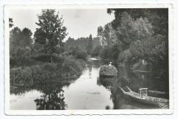 Cpsm Bon Etat 9x14cm  , Marais Poitevin , Le Vanneau , Carte Rare , Une Conche , Timbre Courrier Verso - Autres Communes