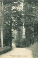 76 - Environs De CAUDEBEC-en-CAUX - Route De Caudebec à Villequier - Caudebec-en-Caux