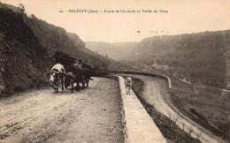 39 POLIGNY  Route De Chamole Et Vallée De Vaux - Poligny