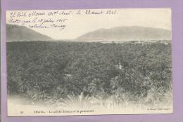 MAROC - CPA - FIGUIG - Le Col De Zénaga Et La Palmeraie - 1916 - Maroc