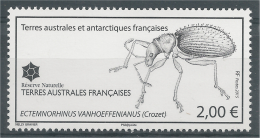 French Antarctic (FSAT), Insect, Crozet Island (Ectemnorhinus Vanhoeffenianus), 2€, 2015, MNH VF - Unused Stamps