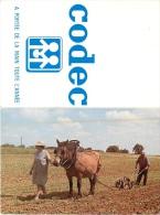 CALENDRIER 1982 CODEC  CLICHE BUZZINI - Calendriers