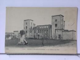 TOURETTES DE FAYENCE (83) - LE CHATEAU DU PUITS - ANIMEE - France