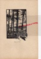 40 - PAYSAGE DES LANDES   - GRAVURE   PAR JEAN DRUET - 1934- PAUL DUVAL EDITEUR ELBEUF - Prints & Engravings