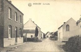 BIERCEE : La Brulée - RARE CPA - Thuin