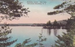 Hiawatha Island Star Lake Adirondack Mountains New York Handcolo