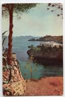 Cp Mallorca Majorque Baléares - Paguera - Cala Fornells - écrite Timbrée 1960 - Mallorca