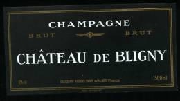 Champagne CHATEAU DE BLIGNY - 1500 Ml - Champagne