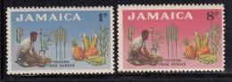 Jamaica MNH Scott #201-#202 Set Of 2 Man Planting Mango Tree, Produce - Freedom From Hunger Issue - Jamaique (1962-...)