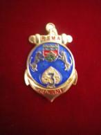 INSIGNE 3 RSMA GUYANNE TRANSLUCIDE FAB DLST - Army