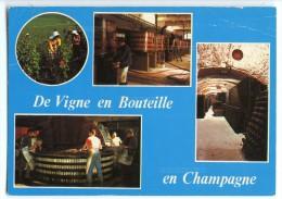 Cp De Vigne En Bouteille En Champagne - écrite 1986 (pour Concours) Flamme Musée Auto Reims - France