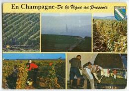 Cp Vendanges En Champagne - Flamme Musée Auto Reims - écrite 1987 (pour Jeux) - France