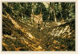 COSTA D'AVORIO  PARCO DI TAI:  PONTE DI LIANE      (NUOVA CON DESCRIZIONE DEL SITO SUL RETRO) - Costa D'Avorio