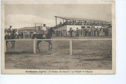 Algérie: L'hippodrome De Aïn Bessem,le Padock Et Les Tribunes - Algerije