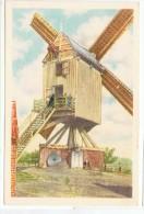 Chromo : Winghe Saint-georges - Moulin à Vent.. - Folklore Belge Côte D´or 2 E Série  - N° 180 (chocolat) - Tielt-Winge