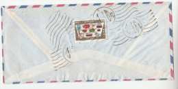 1960s Air Mail IRAN COVER 8r FRUIT FOOD MIROR Stamps  To Germany - Iran