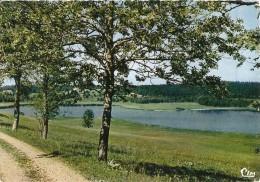 39. CPM. Jura. Bellefontaine. Le Bord Du Lac - Frankrijk
