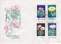 Lettre avec cachet 1er jour cactus -  enveloppe illustr�e - RDA