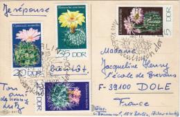 CP avec cachet 1er jour cactus -  CP langage des timbres  - RDA