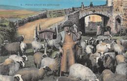 ¤¤  -  4   -   Pâtre Allant Au Paturage   -  Moutons , Berger   -  ¤¤ - Farmers