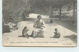 BLIDA - Gorges de la Chiffa, H�tel du Ruisseau des Singes, de bons amis.
