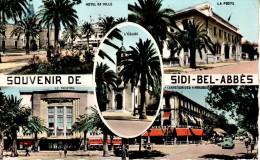 ALGERIE : SIDI-BEL-ABBES - Souvenir