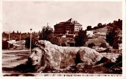 ALGERIE : IFRANE - Le Lion et l'H�tel Ballma