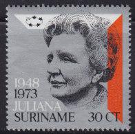 1250(7). Suriname, 1973, Queen Juliana, MNH (**) Michel 654 - Surinam