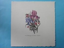 Planches Botaniques De Fleurs Des Années 1950 Environ - A. Green Plants