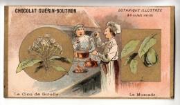 Chromo - Chocolat Guérin- Boutron - Botanique Illustrée - Le Clou De Girofle - La Muscade (cuisinier) - Guérin-Boutron