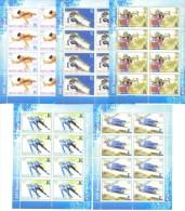 2014.  Winter Olympic Games Sochi, 5 Sheetlets, Mint/** - Inverno 2014: Sotchi