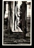 13 MARSEILLE Rue De L'Araignée, Animée, Ed Mireille 205, CPSM 9x14, 193? - Marseille