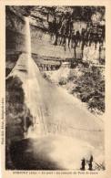Cpa SURJOUX, Ain, La Cascade Du Pain De Sucre Dans Le Parc (31.3) - Châtillon-sur-Chalaronne