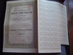 """action""""Charbonnages du Bois de St-Ghislain""""Dour Belgique 1921 Bon �tat,avec coupons"""