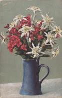 NOD Photochromie AK Alpenbl. Serie H. 484 Alpenblüten ? Alpenblumen ? Blumen Nenke & Ostermaier Dresden Fotochromie - 1900-1949