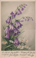 Künstlerkarte AK Fingerhut Erika Nr. 3334 Blume Blumen Pflanze - 1900-1949