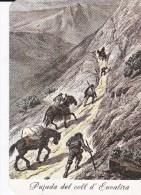 CPM 10X15. ANDORRE  Images Du Passé  Pujada Del Coll D´ ENVALIRA  (Illus.19°s.) Transport De Marchandises à Dos De Mulet - Andorre