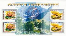 Tayikistan Hb 34 - Tayikistán