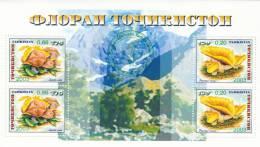 Tayikistan Hb 35 - Tayikistán