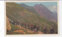 CARD MILITARI ALPINI ARTIGLIERIA  MULO RETRO PUB. PLASMON  19412 SCANNER- FP-N-2-  0882 23342-343 - War 1939-45