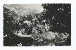 CPA CPSM Pont De Lianes - Postcards
