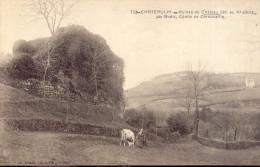 Chateaulin  Ruines Du Chateau - Châteaulin